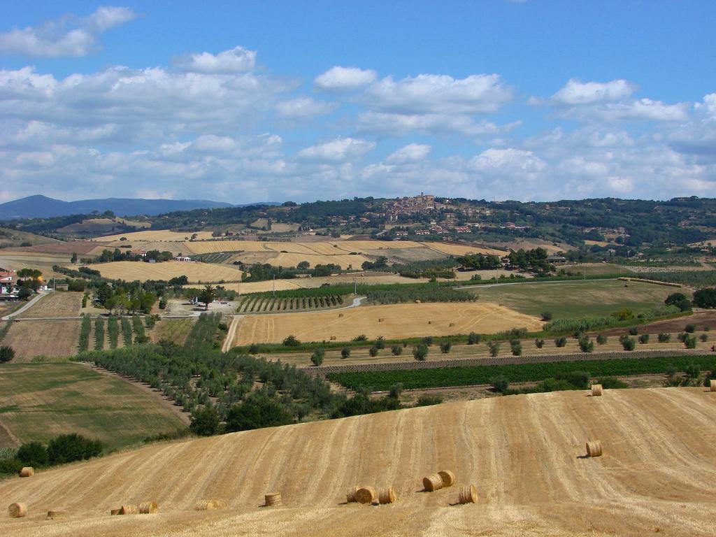 L'azienda Pagani-De Marchi: vini di qualità in crescita costante
