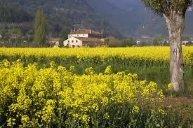 paesaggio villaga